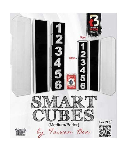 Smart Cubes Red by Taiwan Ben